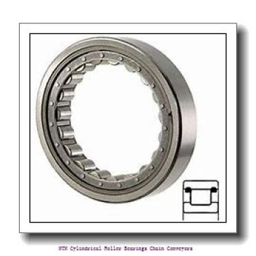 NTN R11A01V Cylindrical Roller Bearings Chain Conveyors