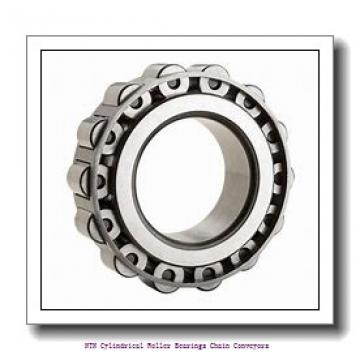 NTN R09A20V Cylindrical Roller Bearings Chain Conveyors